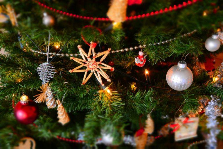 Édesburgonya karácsony