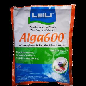 Leili alga 600